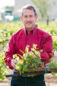 Ed Hellman, professor of viticulture and enology, Department of Plant & Soil Science, College of Agricultural Sciences & Natural Resources, Texas Tech University(Ashley Rodgers)