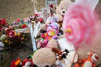 On Friday, the memorial where the body of Sherin Mathews was found continued to grow. (Rose Baca/Staff Photographer)