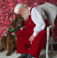 "<p><span style=""font-size: 1em; background-color: transparent;"">Santa will be at </span><strong style=""font-size: 1em; background-color: transparent;"">Pappy's Pet Lodge in Addison</strong><span style=""font-size: 1em; background-color: transparent;""> on Thursday.</span></p>(<p><strong style=""font-size: 1em; background-color: transparent;"">Lone Star Pyrs & Paws</strong></p>)"
