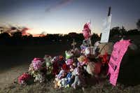 The growing memorial shown on Friday, Nov. 17, 2017, where the body of Sherin Mathews, 3, was found in a culvert near 703 S. Bowser Rd. in Richardson, Texas weeks after she went missing on Oct. 7, 2017. (Rose Baca/Staff Photographer)