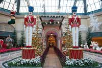 The Bellagio's Conservatory & Botanical Gardens is dressed up for the holidays with a Christmas theme and thousands of flowers.(Kelly McKeon/MGM Resorts International)