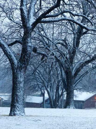 will dallas have a white christmas - Will It Be A White Christmas