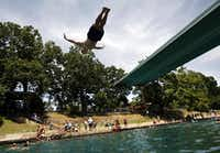Todd Mouser of Los Angeles dives at Barton Springs Pool during a free swim day.(Ricardo B. Brazziell/Austin American-Statesman)