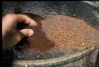 Lava sand and dry molasses(Howard Garrett/Special Contributor)