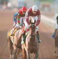 First Oasis with jockey Glenn Murphy up wins the first race at the new Retama Park racetrack in Selma, Texas, Friday, April 7 1995. The number four horse Peaches n' Delight ridden by Susan L. Cate finished second in the race. Big-time horse racing returned to the San Antonio area for the first time in 58 years with the first race at the park.  (CHARLES BARKSDALE/AP)