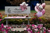 Mourners leave petals at a bench and in a garden dedicated to 3-year-old Sherin Mathews during an interfaith memorial service Mathews at Restland Memorial Chapel and Restland Memorial Park in Dallas Saturday.(Andy Jacobsohn/Staff Photographer)