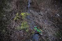 A LimeBike rental bike is left in a marshy area under a bridge near White Rock Lake in Dallas on Dec. 27, 2017. (Rose Baca/Staff Photographer)