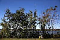 A VBike rental waits in the grass by White Rock Lake in in Dallas on Oct. 23, 2017. (Rose Baca/Staff Photographer)