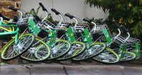 LimeBike rental bikes lie knocked over in a line along Young Street in downtown Dallas.(Louis DeLuca/Staff Photographer)