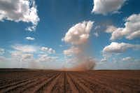 A dust devil rolls across a field near Sweetwater, an area commonly referred to by locals as The Big Country.(David Leeson/The Dallas Morning News)