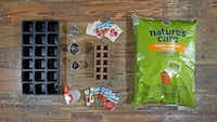 The essentials for starting tomato seeds indoors(Jae S. Lee/Staff Photographer)