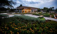 A Tasteful Place at the Dallas Arboretum (Ashley Landis/Staff Photographer)