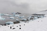 A Polar Latitudes cruise ship sails off the coast of Antarctica.(Kristy Alpert/Special Contributor)