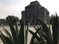 Plants frame the Diego Rivera Museo Anahuacalli, a pyramid-shaped museum built from black volcanic rock to house some 50,000 statues and other pre-Hispanic artworks collected by the celebrated Mexican painter. Several sketches for Rivera's murals are also displayed there.(Anita Snow/AP)