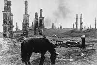 In this photo taken on Dec. 18, 1942, an abandoned horse grazes among the ruins of the Soviet city of Stalingrad.(Alvin Steinkopf/AP)