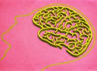 Use these seven tips to find your way to better brain health.(Michael Hogue/Staff Artist)