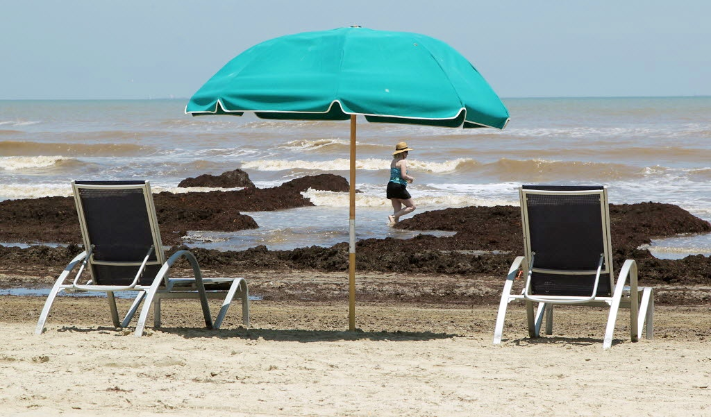 There S So Much Poop On Texas Beaches That You May Want To Consult