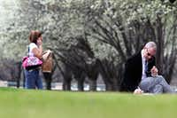 Blooming Bradford pear trees in Dallas(File photo/Staff)