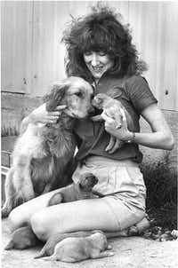 Julie Kravis shows off Starr and her pups in 1981.(Jay Godwin/The Dallas Morning News)