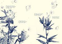 Two facing pages from <i>This One Summer</i>, by Mariko Tamaki and Jillian Tamaki, published by First Second Books.(First Second Books)