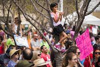 Isabelle Garcia-Chu, 8, of Richardson, stands in a tree while eating a popsicle and listening to speakers.(Smiley N. Pool/Staff Photographer)