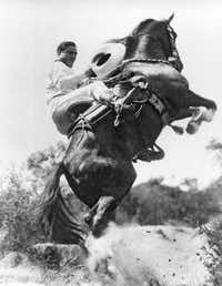 Hollywood western film duo, actor Tom Mix and his horse Tony, perform a stunt on May 1, 1923. (AP)