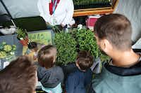 EarthX Expo fosters environmental education and family entertainment through a variety of exhibits, conferences and films. Displays and vendors devoted to solving garden challenges will capture the interest of garden enthusiasts. (Jason Kindig)
