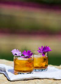Rose Old Fashioned drinks garnished with African daisies, which are edible.(Ashley Landis/Staff Photographer)