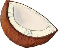 Coconut(William Brown/Special Contributor)