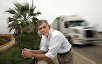 When UT-Arlington engineering professor Richard McMullen noticed a beautiful palm tree wedged on a steep embankment alongside Division Street near State Highway 360, he fell in love with the tree. He gave it water during dry spells, hauling water during his commute from Carrollton.(2009 File Photo/Staff)