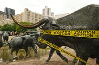 Like they stampeded through a crime scene(Ron Baselice/Staff Photographer)