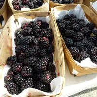 D-Bar Farms from Ponder sells a variety of berries, including these blackberries, at the Denton County Farmers Market next door to the Denton Community Market. (Kim Pierce/Special Contributor)
