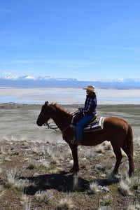 Ginger Brown, owner of R & G Horse and Wagon, leads horseback tours on Antelope Island overlooking the Great Salt Lake.(Sage Reeve/R & G Horse and Wagon)