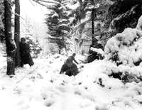 American infantrymen of the 290th Regiment move through fresh snowfall as they advance against German troops in a forest near Amonines, Belgium, on January 4, 1945.(Associated Press)