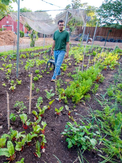 How North Texas Farmers Are Using Social Media To Keep Business - Farm to table dallas