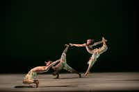 Alonzo KIng's <i>Biophony</i> is set to a score of recorded animal sounds by composers Bernie Krause and Richard Blackford, a fitting accompaniment to King's naturalistic choreography. Alonzo King LINES Ballet will perform the piece on a TITAS program June 9 at Winspear Opera House.<br>(Quinn B. Wharton)
