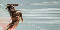 """<p><span style=""""font-size: 1em; background-color: transparent;"""">Yujin Kim of Alonzo King LINES Ballet dances in King's Sand, set to a jazz score by Charles Lloyd and Jason Moran. Presented by TITAS, the San Francisco-based company performs at Winspear Opera House on June 9, 2018.</span></p>(RJ Muna)"""