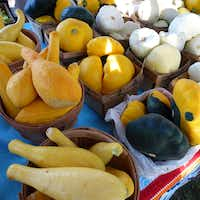 La Esperanza Farm from Nevada, Texas, grows a wide variety of squash and sells at the Farmers Branch Market. (Kim Pierce/Special Contributor)