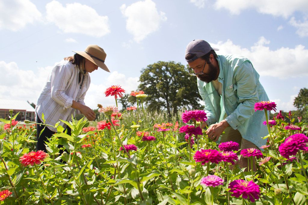 Meet a young Texas couple who quit their jobs to start a flower farm ...