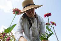 Co-owner Aelish Lascoe tends to zinnias in the field at Tin Cup Farm in Buffalo.(Brian Elledge/Staff photographer)
