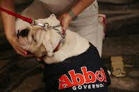 A supporter pets Reagan, who is wearing a Greg Abbott for Texas governor shirt, before U.S. representative Pete Sessions, of the 32nd district, speaks at a campaign kickoff event at The Highland Dallas hotel in Dallas Saturday June 23, 2018. Sessions, a republican, is running against democrat Colin Allred as an incumbent for the 32nd seat. (Andy Jacobsohn/The Dallas Morning News)(Andy Jacobsohn/Staff Photographer)