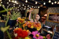 Carina Vargas, 29, a flower designer and event planner, tends to zinnias flowers while working at Dirt Flowers in Dallas.(Ben Torres/Special Contributor)