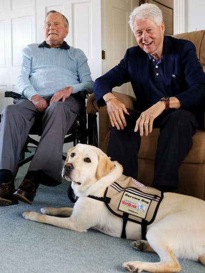 perro de servicio de George HW Bush, Sully