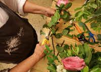 Thistle Floral Design owner Jan Barstad trims the stems of flowers.(Jason Janik/Special Contributor)