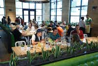 <p>The lunch crowd starts to fill True Food Kitchen at Legacy West in Plano on a Friday in May 2017.</p>(Ron Baselice/Staff Photographer)