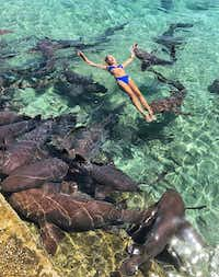 "<p><span style=""font-size: 1em; background-color: transparent;"">Nineteen-year-old Katarina Zarutskie of Houston was bitten by a nurse shark while on vacation in the Bahamas.</span></p>(<p><span style=""font-size: 1em; background-color: transparent;"">Tom Bates</span></p>)"