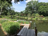The Japanese Garden at Missouri Botanical Garden may be the most peaceful spot on earth. (Scott Cantrell/Special Contributor)