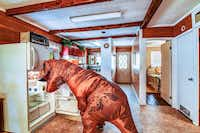 If only a T. rex could actually reach to the back of the fridge. Nonetheless, a T. rex has been enlisted to help market this Granbury home.(Casey Lewis.)