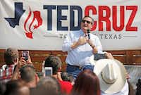 US Senator Ted Cruz is pictured on stage at Ferris Wheelers Restaurant in Dallas on  July 28, 2018.(Louis DeLuca/Staff Photographer)