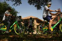 Townview Magnet Center physical education students ride Lime bikes  along Blaylock Drive and Colorado Boulevard in the Lake Cliff Historic District in the Oak Cliff. (Andy Jacobsohn/Staff Photographer)